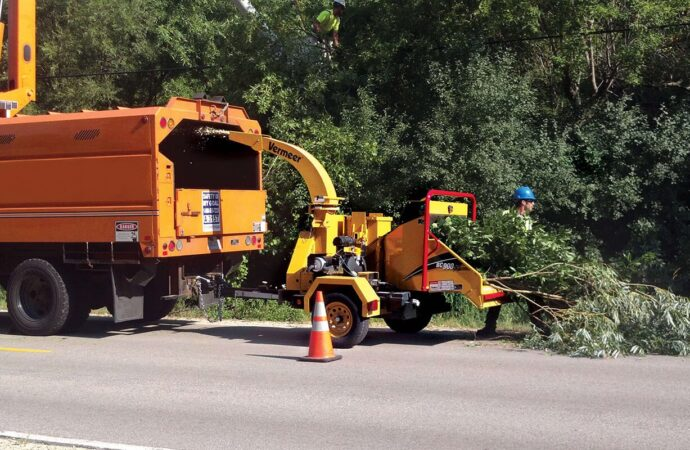 Commercial Tree Services-Sunrise FL Tree Trimming and Stump Grinding Services-We Offer Tree Trimming Services, Tree Removal, Tree Pruning, Tree Cutting, Residential and Commercial Tree Trimming Services, Storm Damage, Emergency Tree Removal, Land Clearing, Tree Companies, Tree Care Service, Stump Grinding, and we're the Best Tree Trimming Company Near You Guaranteed!